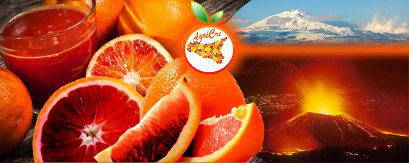 Arancia rossa dell'Etna